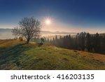 Stock photo morning sun over foggy carpathian mountains ukraine 416203135