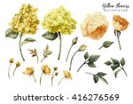 flowers and leaves  watercolor  ... | Shutterstock . vector #416276569