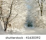Picturesque Winter Lane Leadin...