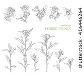 hand drawn herbs. vector... | Shutterstock .eps vector #416446264