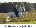 Horsewoman On White Horse In...