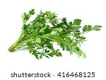 parsley herb isolated on white... | Shutterstock . vector #416468125