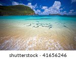 School of King Fish at Lord Howe Island - stock photo