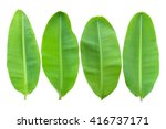 banana leaves | Shutterstock . vector #416737171