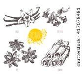 series   vector fruit ... | Shutterstock .eps vector #417078481