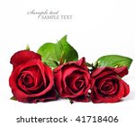 Three Red Roses Against A Whit...