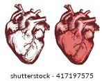 human heart  anatomical heart... | Shutterstock .eps vector #417197575