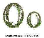 Ivy Plant Font Nature