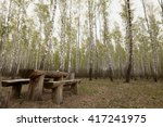 Picnic Bench Sits On Lawn Unde...