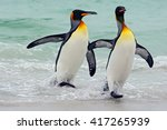 king penguins going from blue... | Shutterstock . vector #417265939