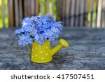 Flowers. Blue Flowers. Flowers...