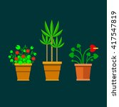 flowers in pots flat style. set ... | Shutterstock . vector #417547819