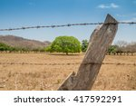 An Aged Barbed Wire Fence Line...