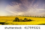 spring in the fields  blooming... | Shutterstock . vector #417595321