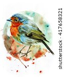 watercolor bird robin on the... | Shutterstock . vector #417658321