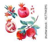 watercolor pomegranate bloom... | Shutterstock . vector #417744391