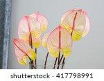 beautiful anthurium flamingo... | Shutterstock . vector #417798991