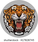 tiger face | Shutterstock .eps vector #417828745