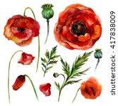 watercolor poppies set.... | Shutterstock . vector #417838009