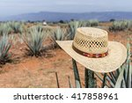 sombrero on agave. hat on a... | Shutterstock . vector #417858961