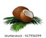 coconuts with leaves. vector... | Shutterstock .eps vector #417956599