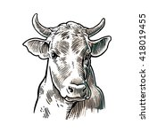 cows head. hand drawn in a... | Shutterstock .eps vector #418019455