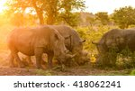 herd of rhino fighting in dust... | Shutterstock . vector #418062241