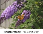 american lady butterfly on a... | Shutterstock . vector #418245349