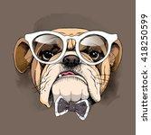 bulldog portrait in a glasses... | Shutterstock .eps vector #418250599