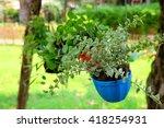 plant pot in garden | Shutterstock . vector #418254931
