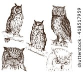 set of hand drawn owls  in...   Shutterstock .eps vector #418517959