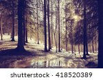 landscape forest eco march | Shutterstock . vector #418520389