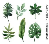 Watercolor Tropical Leaves - Fine Art prints