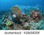 green turtle entangled in a... | Shutterstock . vector #418658209