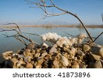 Dead Sea As Seen Through The...
