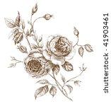 engraved english rose. vector...   Shutterstock .eps vector #41903461