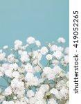 Stock photo light gypsophila baby s breath flowers 419052265