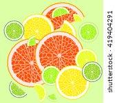 slices of citrus fruits. vector ... | Shutterstock .eps vector #419404291