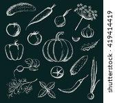 set of hand drawn vegetables.... | Shutterstock .eps vector #419414419