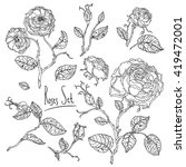Highly detailed uncolored colouring book style hand drawn wild roses set for adult colouring book. Hand-drawn, doodle, vector the best for your design, wedding cards, coloring book. Black and white.
