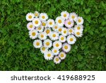 Flower Heart In Grass
