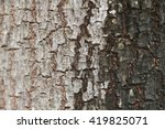 Tree Bark Two Colors