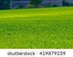 bright green spring field   Shutterstock . vector #419879239