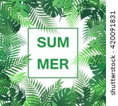 summer tropical background with ... | Shutterstock .eps vector #420091831