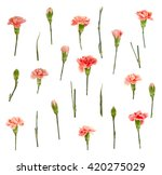 Red Carnation Floral Pattern...
