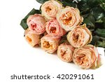 set of fresh peach peony roses... | Shutterstock . vector #420291061