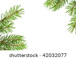 pine tree branch isolated on... | Shutterstock . vector #42032077
