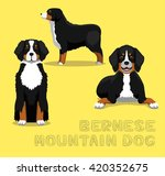 Dog Bernese Mountain Dog...