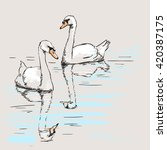 Sketch Of Couple Of Swans With...