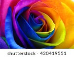 Fresh Beautiful Multicolor...